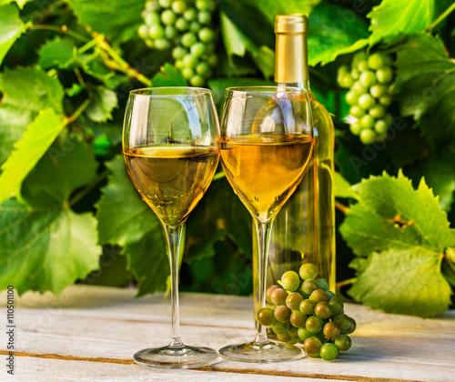 wina-wytrawne-w-wysokich-kieliszkach-wsrod-winorosli