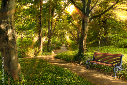 Park ,bench in the morning light. Canvas Print
