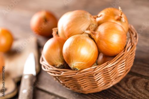 Fotografie, Obraz  onion