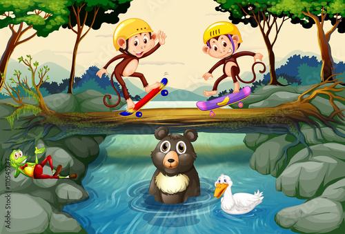 In de dag Kinderkamer Monkeys on skateboard in the forest