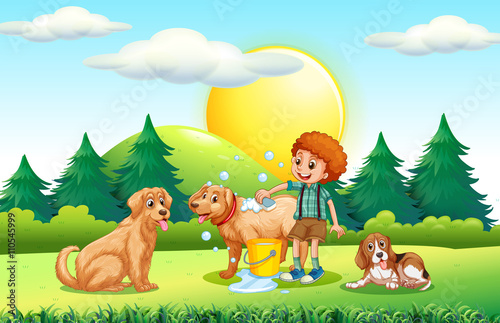 Photo Stands Kids Boy giving dogs bath in the park
