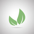 Abstract vector icon - leaf (natural product)