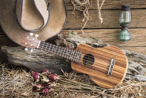 Deurstickers Retro Still life photography with ukulele and dry roses with american west rodeo brown felt cowboy hat in vintage ranch barn background