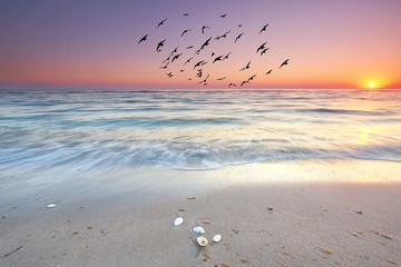Obraz der Tag beginnt am Meer, Sonnenaufgang am Strand