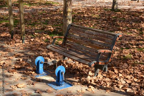 Fotografie, Obraz  pedales en un parque público