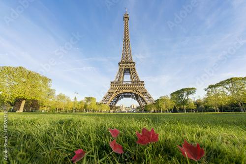 Deurstickers Eiffeltoren Sunny morning and Eiffel Tower, Paris, France
