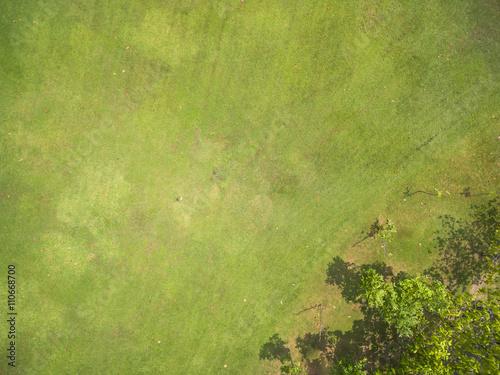 Vue aerienne Natural grass texture