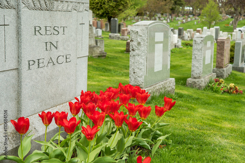 Headstones in a cemetary with red tulips and rest in peace inscription Canvas Print