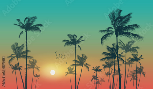 Fototapeta Exotic tropical palm trees at sunset