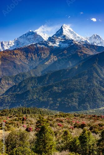 Staande foto Nepal The Annapurna South in Nepal