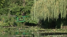 The Japanese Water Garden And ...