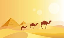 Camel Caravan And Pyramides