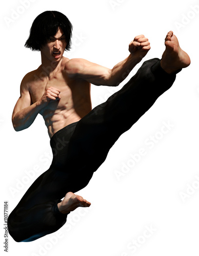 Photographie  Kung fu martial artist