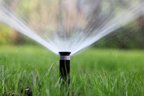 Poster Jardin sprinkler of automatic watering