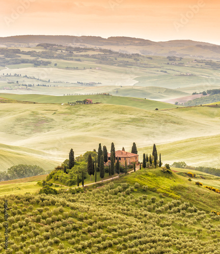 Poster Toscane Landscape of Tuscany, hills and meadows, Toscana - Italy