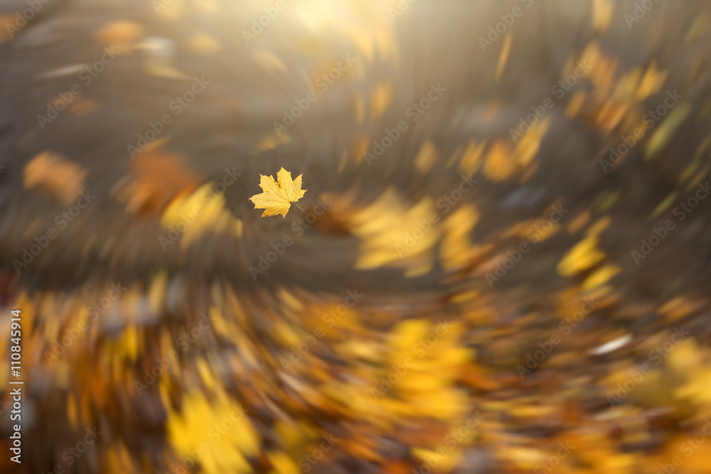 Fototapety, obrazy: Falling leaves background with radial vortex blur effect