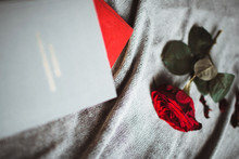 Red Rose Lies Near Two Books