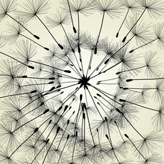 Panel Szklany Skandynawski Abstract dandelion background vector Illustration spring