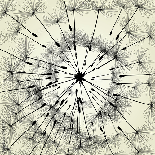 Abstract dandelion background vector Illustration spring - 110880119
