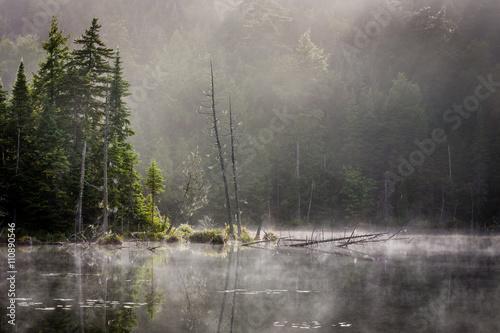 """Pinturas sobre lienzo  """"Niebla de la mañana"""" El Adirondack en el norte del estado de Nueva York en una mañana de agosto"""