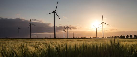 wind turbine farm sundown