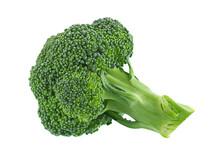 Mini Broccoli Cabbage On White