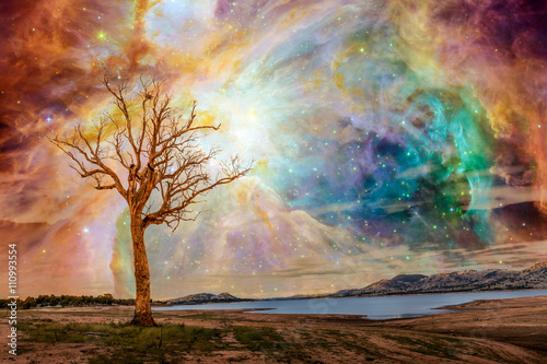 Plakaty Fantasy alien-planet-fantasy-landscape-tree-standing-near-lake-with-bright-galaxy-and-stars-shining-in-the-sky-elements-of-this-image-are-furnished-by-nasa