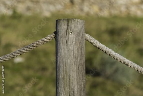 Fotografia, Obraz  Estaca de madera encordada.