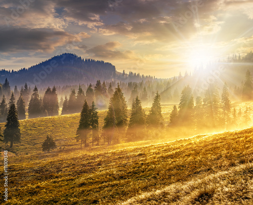 Wall Murals Melon fog on hot sunrise in mountains at sunset