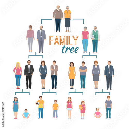 Photo  Genealogy Tree Illustration