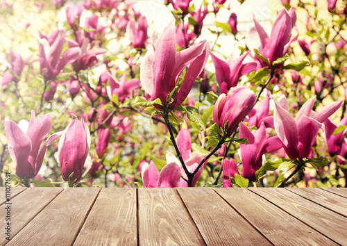 Empty wooden table and  blurred blooming tree on background Poster