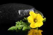 Shot Of Wet Zucchini Flower, Z...
