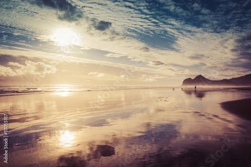 Bethells Beach at Auckland, New Zealand
