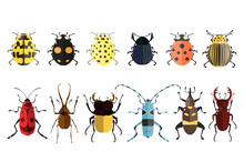 Bug Icons. Insect Set.