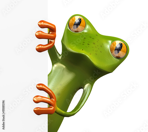 Photo 3d frog and blank empty board