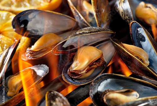Valokuva  Grilled Blue Mussels