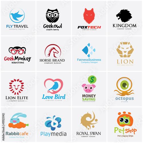 Fotografie, Tablou  Animal logo collection,lion logo,dragon logo,eagle logo,bird logo,swan logo,vect