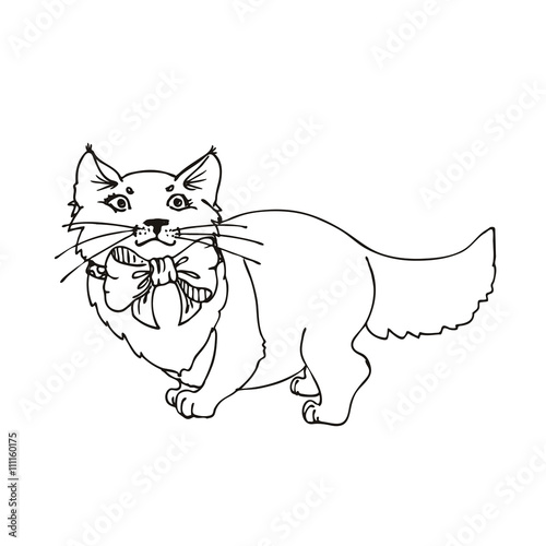 Tuinposter Doe het zelf hand drawn vector children's coloring book of cat. vector eps 10