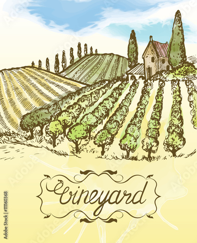 Hand drawn vineyard landscape. Vintage vector watercolor illustration.  Lettering in frame.