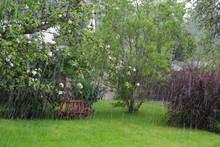 Wetter: Garten Im Regen Mit Bäumen Und Leiterwagen