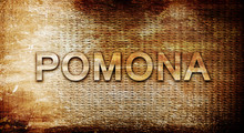Pomona, 3D Rendering, Text On A Metal Background
