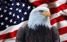 Bandiera Stati Uniti Con Aquila