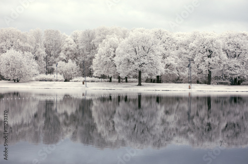 Photo  Infrared landscape