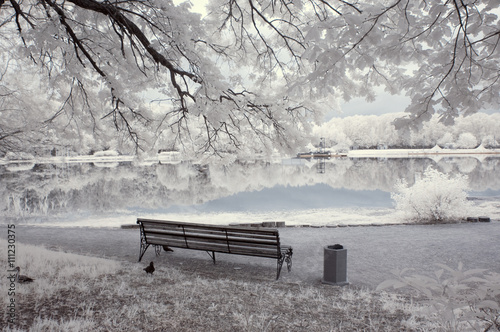 Infrared landscape Canvas Print
