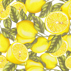FototapetaSeamless pattern of hand drawn lemons
