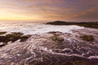 golden sunset at pacific ocean with waves on rocky shore