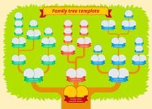 Family Tree Template. Modern Flat Style Illustration Of Tree With Leaves, Branches And Photo Borders With Ribbons. Genealogy Table Vector Design