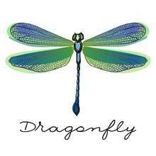 Hand Drawn Colorful  Dragonfly...