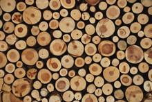 Holz Quersachnitt Baum Bäüme Stapel Hintergrund Braun Jahresringe Ast Äste Holzwand Rohstoff Pellet Erneuerbare Energie