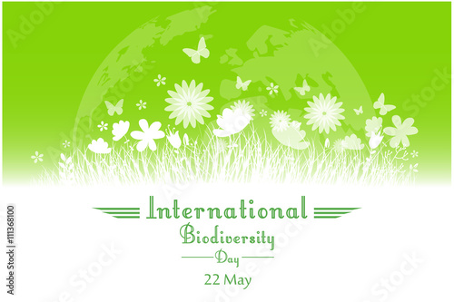 International Biodiversity Day background with flower, butterflies and grass sil Canvas Print